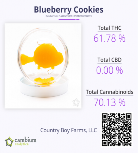 BB Cookies Cam