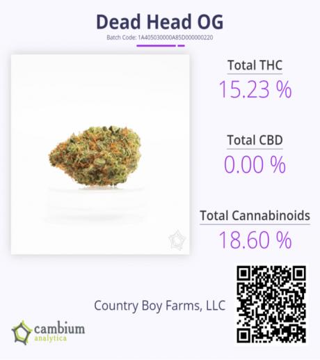 Dead HEad CAM