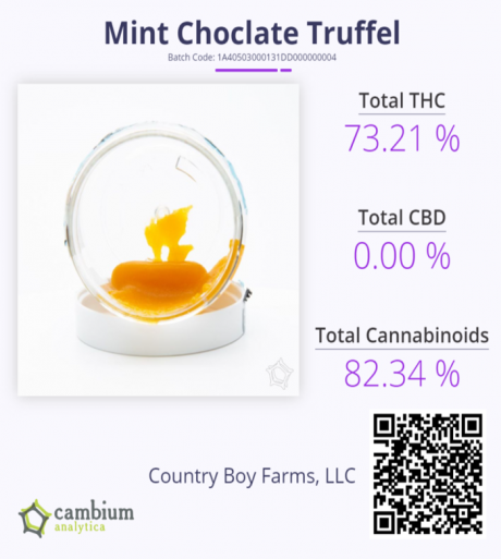 Mint Choc Truffel Cam