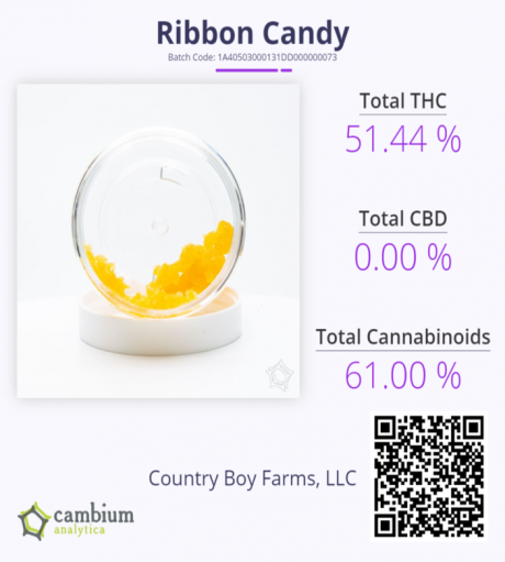 Ribbon Cam