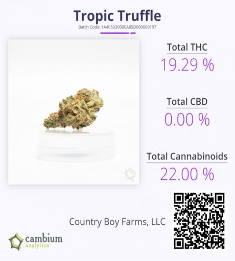 Tropic Truffle