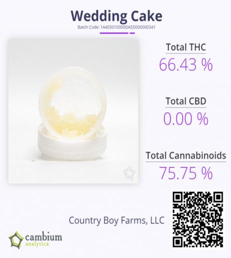 Wedding Cake Cam